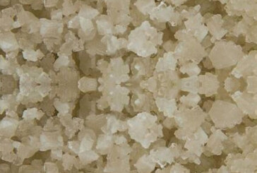 Keltisch zeezout: een strooibus vol mineralen